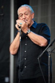 Charlie Musselwhite performs onstage at the Firefly Music Festival at The Woodlands of Dover International Speedway on June 23 2013 in Dover Delaware