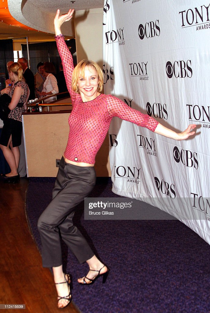 Charlotte d'Amboise during 2007 Tony Award Nominee Press Reception at The Marriott Marquis in New York New York United States