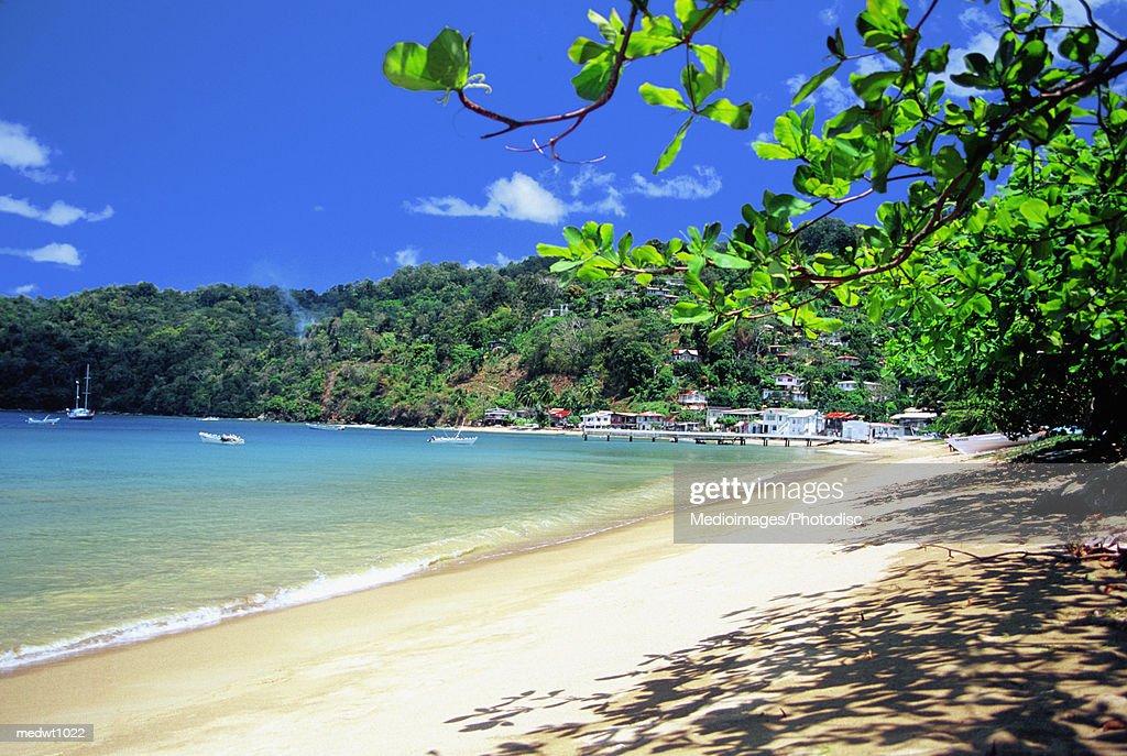 Charlotteville Beach on Tobago, Caribbean