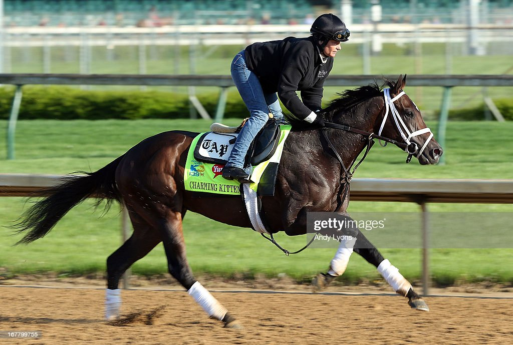 Charming Kitten trained by Todd Pletcher runs on the track during morning training in preperation for the 2013 Kentucky Derby at Churchill Downs on April 30, 2013 in Louisville, Kentucky.