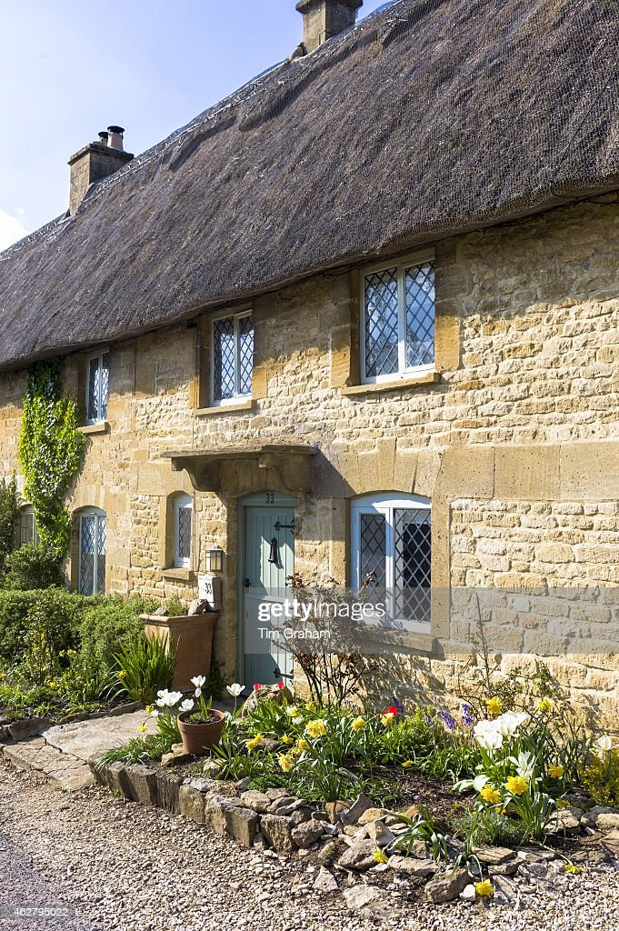 Charming pretty thatched cottage thatching leaded light windows spring flowers in front garden at Taynton The Cotswolds UK
