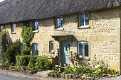 Charming pretty thatched cottage with thatching leaded light windows and spring flowers at Taynton The Cotswolds Oxfordshire UK
