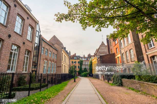 Charming 'Rue des Weppes' (Weppes Street) in the old town of the city of Lille, North of France