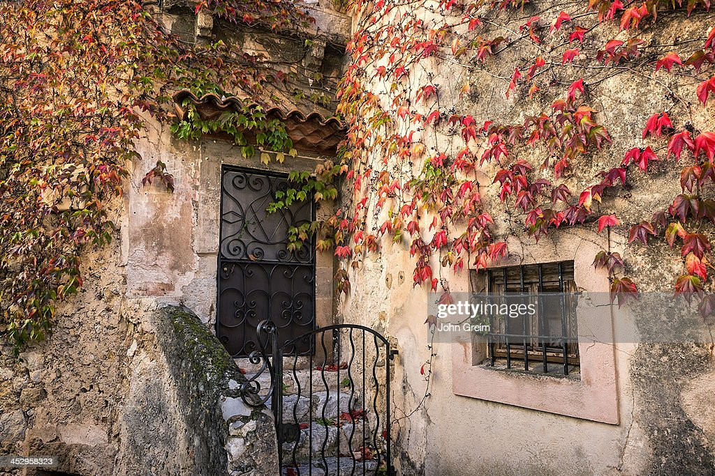 Charming rustic house facade with ivy.