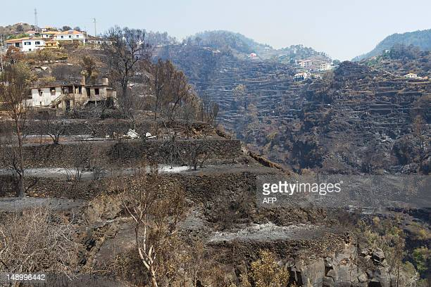 A charred area is pictured after a wildfire in Gaula on Madeira Island on July 21 2012 The problems started on July 18 evening when high temperatures...