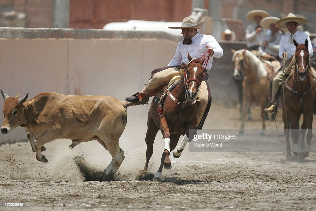 Charroes gallop their horses in Mexico September 23 2006 'Charreria' is one of Mexico's oldest traditions a demonstration of courage and style...