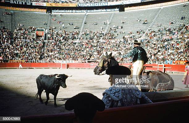 Charro's rope a bull in the Caletilla Bull fighting ring in AcapulcoMexico