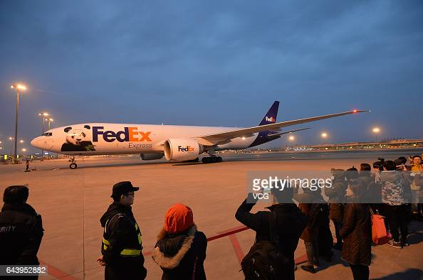 A charter flight carrying Americaborn giant panda Bao Bao lands at Chengdu Shuangliu International Airport on February 22 2017 in Chengdu Sichuan...