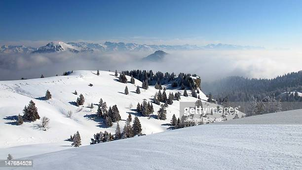 Chartreuse mountains in winter
