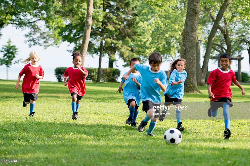 Chasing the Soccer Ball : Stock Photo