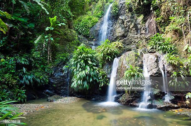 Chasing Waterfalls Series