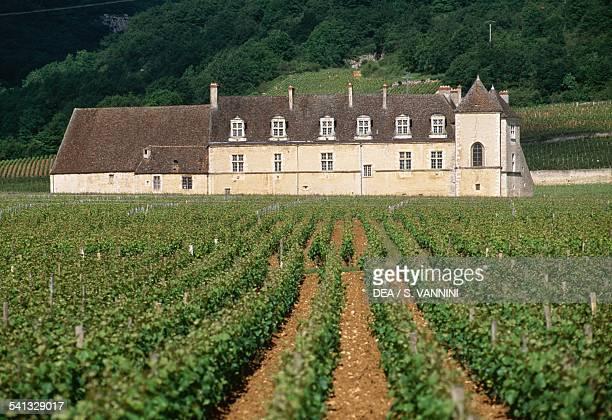 Chateau du Clos de Vougeot and its vineyards Vougeot Coted'Or Burgundy France