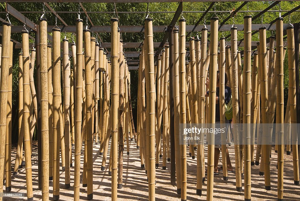 Bamboo poles for garden garden inspiration for Uses for bamboo canes
