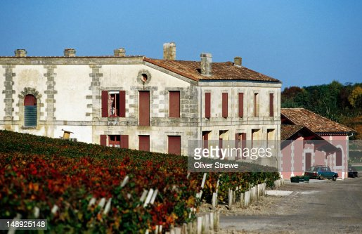 Chateau Loudenne vineyard in Gironde-Medoc region.