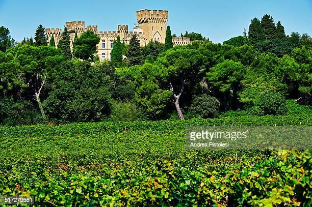 Chateauneuf du Pape, Wine Region, France