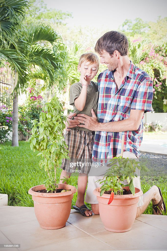 Checking the garden with dad : Stock Photo