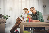 Happy dad and child making toy tower from small blocks with joy. Dog is looking at construction with interest