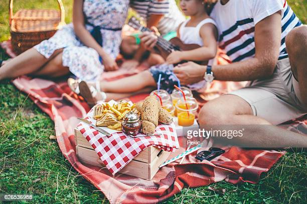 Cheerful happy family picnicking