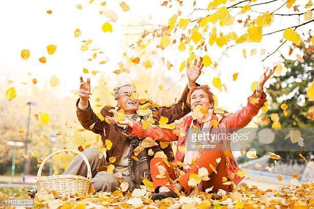 Fröhlich Älteres Paar mit Picknick in der Natur.
