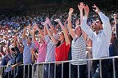 Cheering crowd in stadium