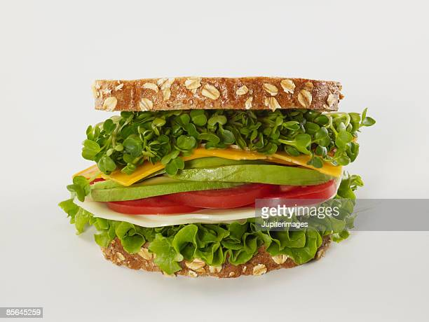 Cheese and vegetable sandwich