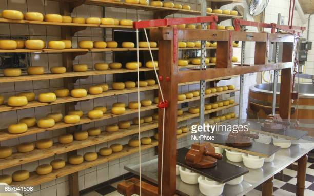 Cheese factory in the small town of Zaanse Schans Holland Netherlands Europe