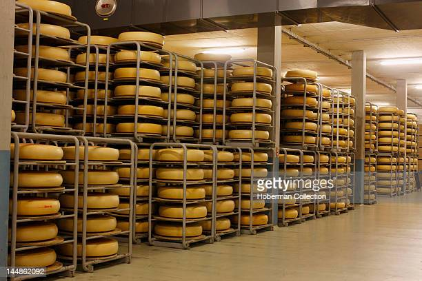 Cheese Factory Switzerland
