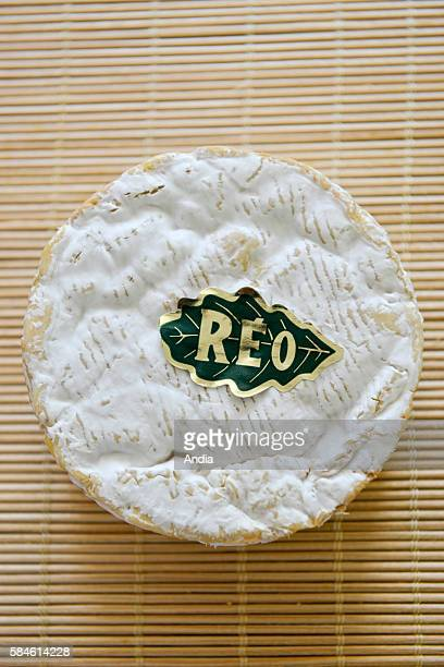 Cheese manufacturing facility camemberts moulded by hand in the dairy 'Reo' in Lessay unpasteurised Camembert cheese with a guarantee of origin