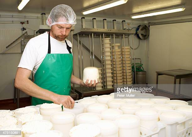 Cheesemaker holding moulded curds at farm factory
