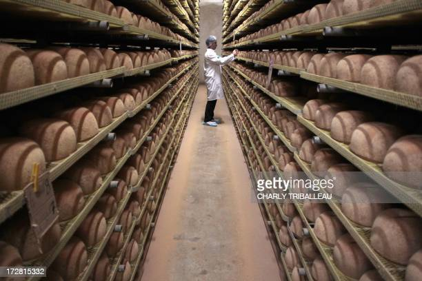 A cheesemonger checks mimolette cheese at a production site of the French Isigny Ste Mere company on July 4 2013 in IsignysurMere northwestern France...