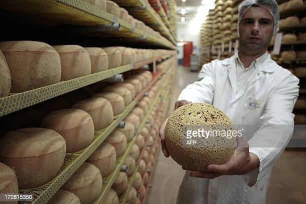 A cheesemonger holds a 24month old mimolette cheese at a production site of the French Isigny Ste Mere company on July 4 2013 in IsignysurMere...