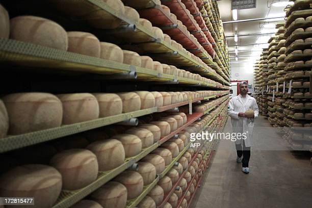 A cheesemonger walks along mimolette cheese in a production site of the French Isigny Ste Mere company on July 4 2013 in IsignysurMere northwestern...