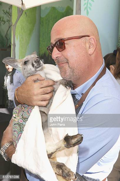 Chef Andrew Zimmern holds kangaroo at Badia Spices' Fun And Fit As A Family Sponsored By Carnival Geaturing Goya Foods Kidz Kitchen during 2016 Food...