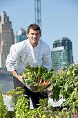 Chef Harvests Homegrown Herbs and Vegetables Urban Restaurant Rooftop Garden