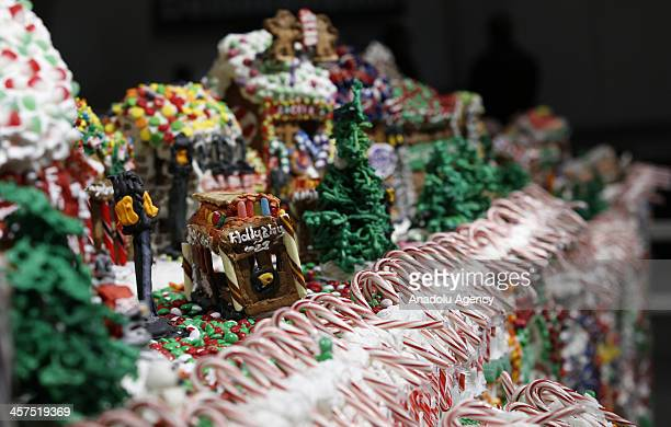 Chef Jon Lovitch breaks Guinness World Records' by making largest gingerbread village using 861kg of icing sugar 181kg of lollies and over 200kg of...