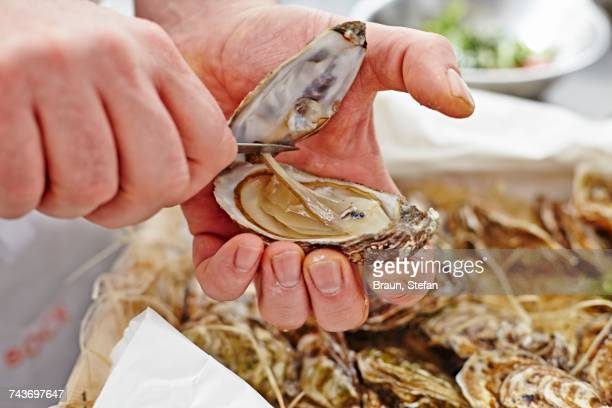 A chef opening an oyster