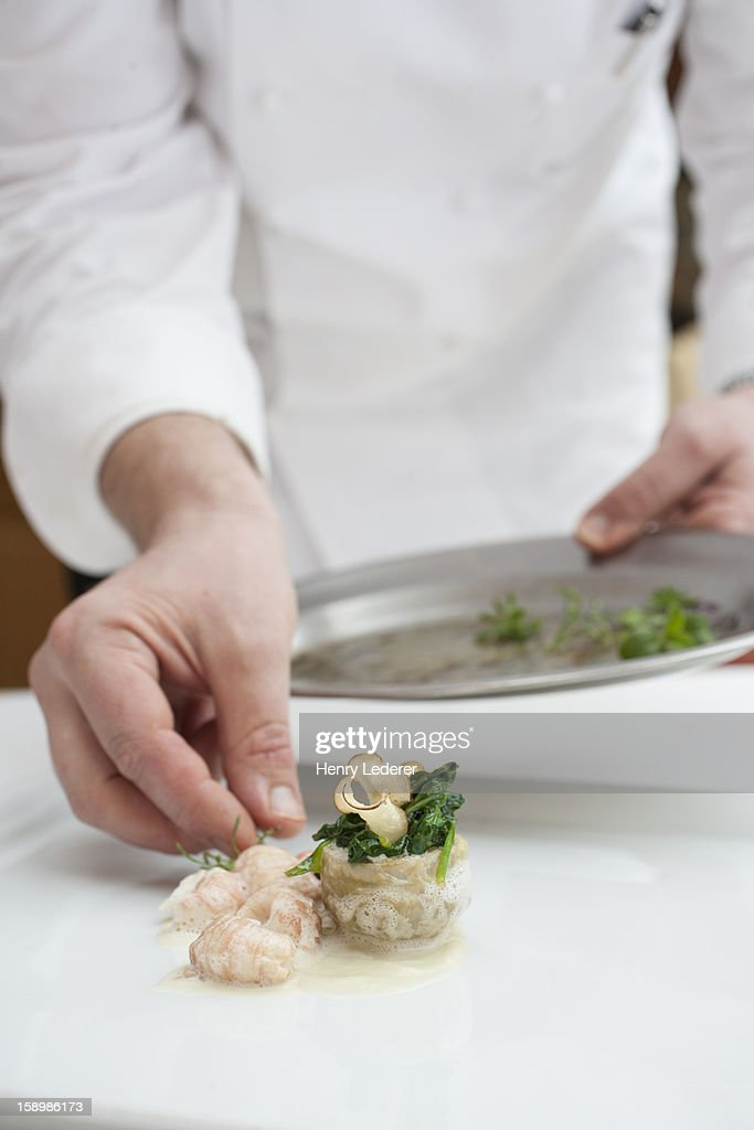 Chef preparing dish : Stock Photo