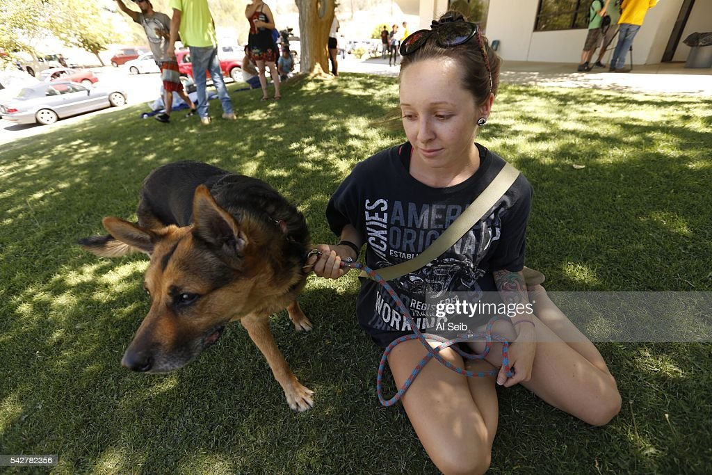 Chelsea Hunt holds her dog Charlie, almost all she was able to save at the Red Cross evacuation Center in Kernville Friday June 24, 2016. Fire officials confirmed two fatalities Friday in a fast-moving Erskine fire near Lake Isabella that has scorched more than 19,000 acres and destroyed 100 structures.