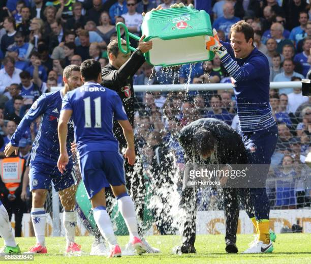 Chelsea manager Antonio Conte gets a soaking from his players and staff during the Premier League match between Chelsea and Sunderland at Stamford...