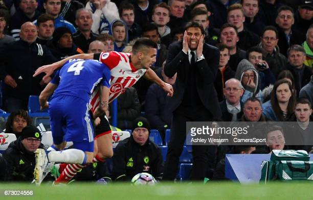 Chelsea manager Antonio Conte looks on during the Premier League match between Chelsea and Southampton at Stamford Bridge on April 25 2017 in London...