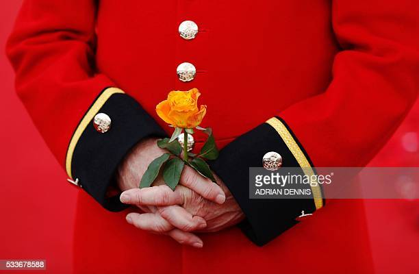 A Chelsea Pensioner holds a rose as he stands in the 5000 Poppies Garden at the Chelsea Flower Show in London on May 23 the garden created by...