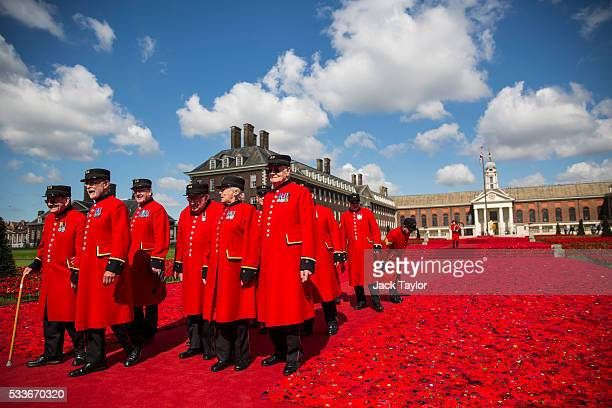 Chelsea pensioners walk along an installation comprised of around 300000 handknitted poppies designed by Phillip Johnson at the Chelsea Flower Show...