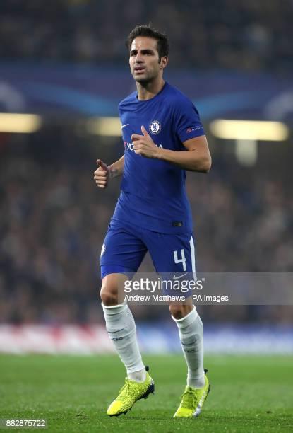 Chelsea's Cesc Fabregas during the UEFA Champions League Group C match at Stamford Bridge London