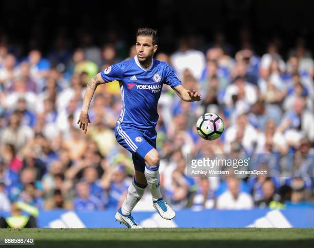 Chelsea's Cesc Fabregas in action during todays match during the Premier League match between Chelsea and Sunderland at Stamford Bridge on May 21...