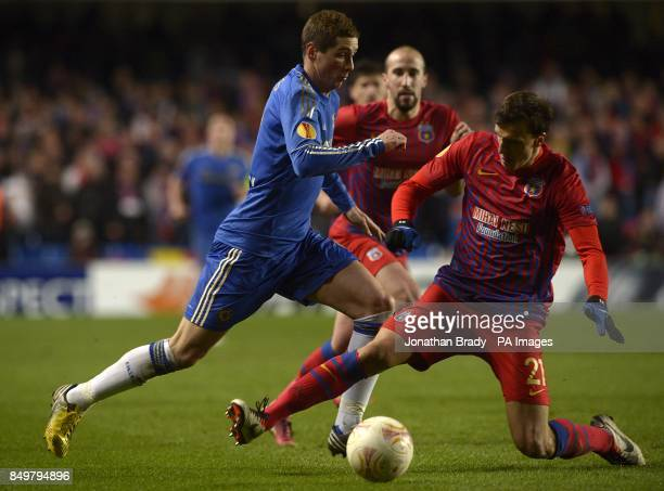 Chelsea's Fernando Torres and Steaua Bucuresti's Vlad Chiriches battle for the ball