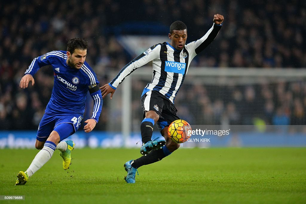 Chelsea's Spanish midfielder Cesc Fabregas (L) and Newcastle United's Dutch midfielder Georginio Wijnaldum (R) vie for the ball during the English Premier League football match between Chelsea and Newcastle United at Stamford Bridge in London on February 13, 2016. / AFP / GLYN KIRK / RESTRICTED TO EDITORIAL USE. No use with unauthorized audio, video, data, fixture lists, club/league logos or 'live' services. Online in-match use limited to 75 images, no video emulation. No use in betting, games or single club/league/player publications. /