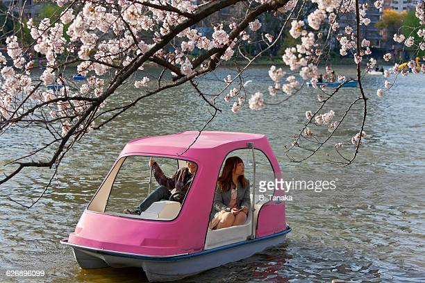 Cherry Blossom Boat at Ueno Park in Tokyo, Japan