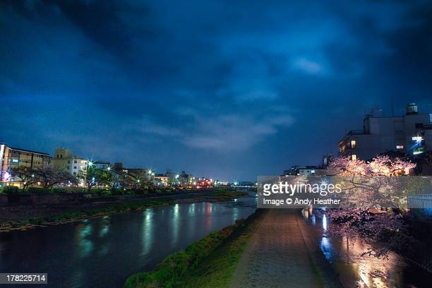 Cherry blossom over the Kamogawa River in Kyoto