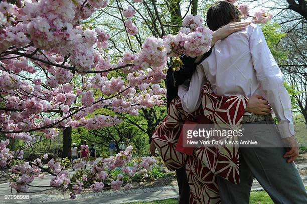 Cherry Blossoms at the Brooklyn Botanic Garden Newlyweds Vladislav Belyayev and Miho BelyayevNozawa have their picture taken under a cherry tree in...
