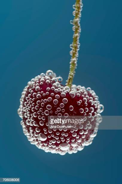 A cherry in water with bubbles and a blue background